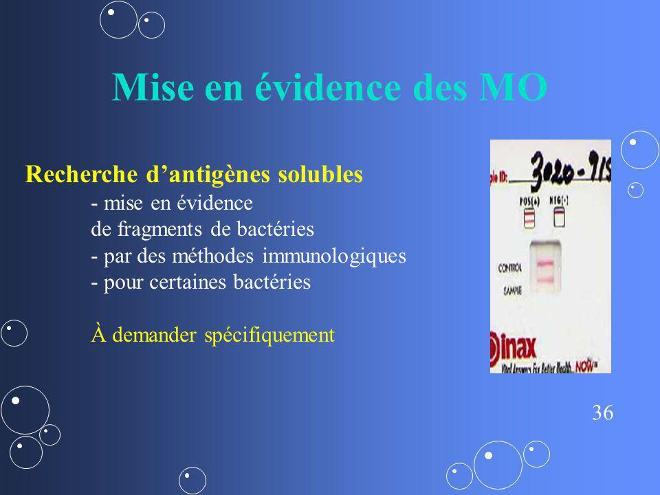 Mise en évidence des MO Recherche d'antigènes solubles