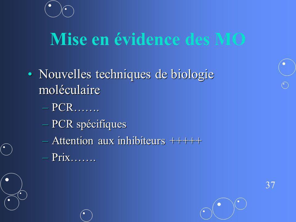 Mise en évidence des MO Nouvelles techniques de biologie moléculaire