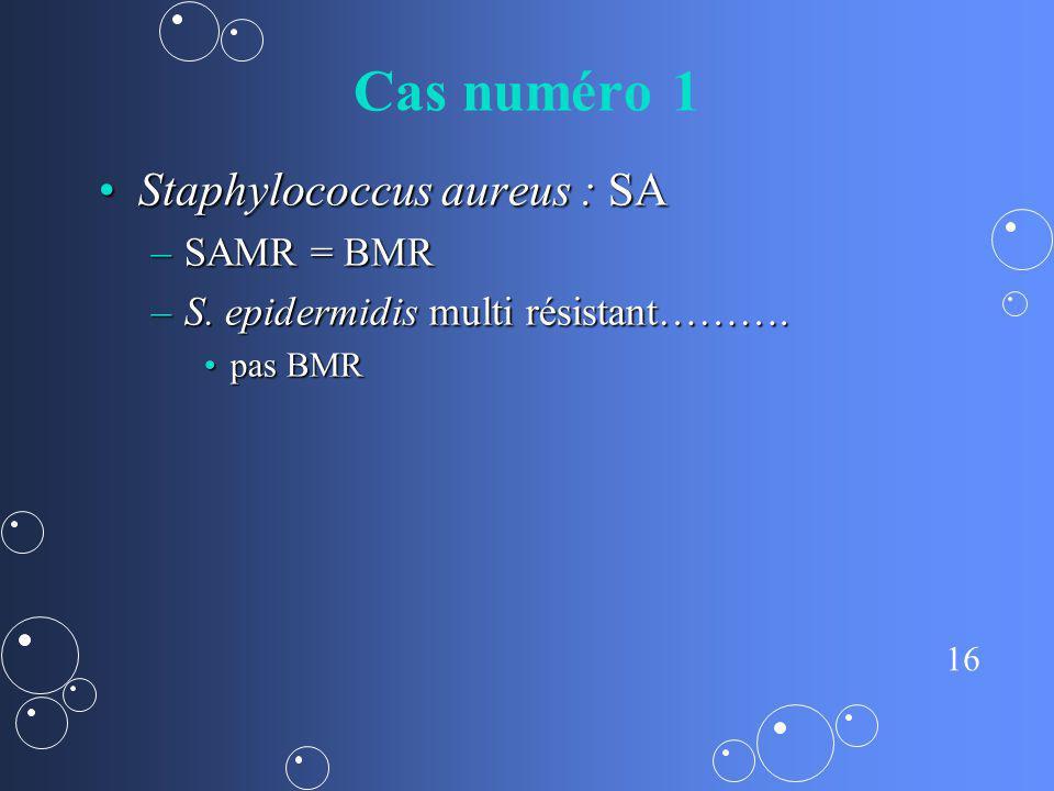 Cas numéro 1 Staphylococcus aureus : SA SAMR = BMR