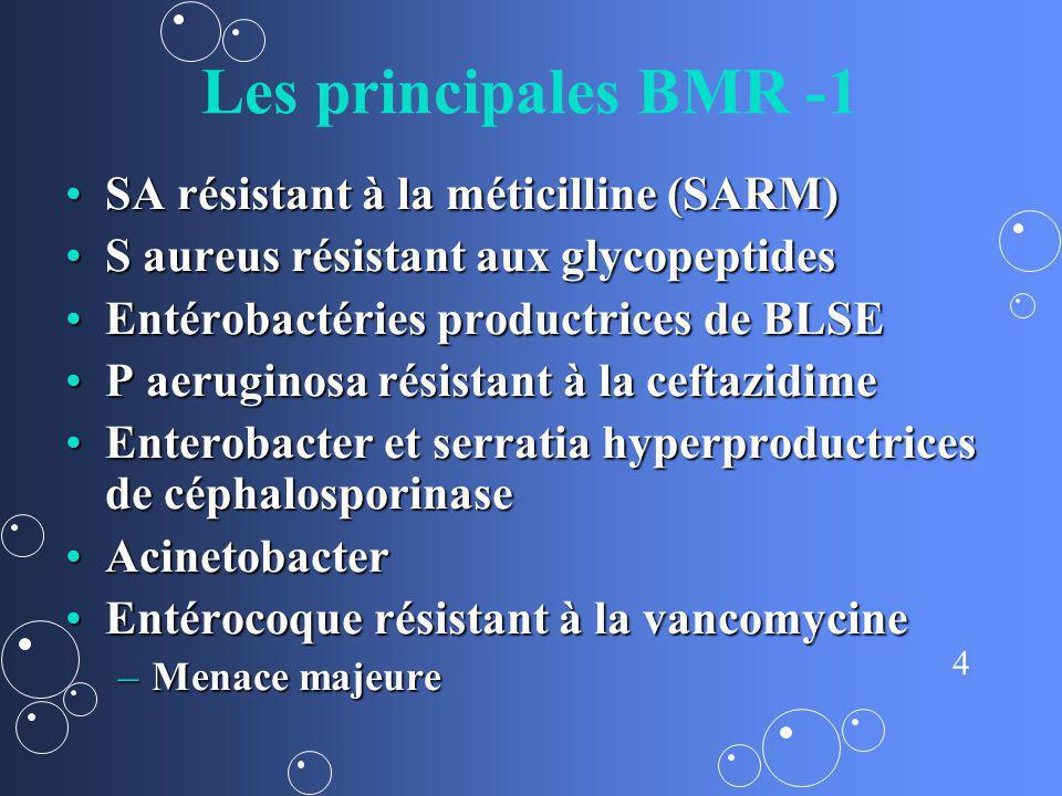 Les principales BMR -1 SA résistant à la méticilline (SARM)