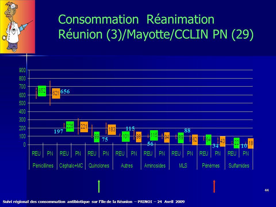Consommation Réanimation Réunion (3)/Mayotte/CCLIN PN (29)