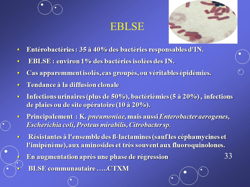 EBLSE Entérobactéries : 35 à 40% des bactéries responsables d IN.