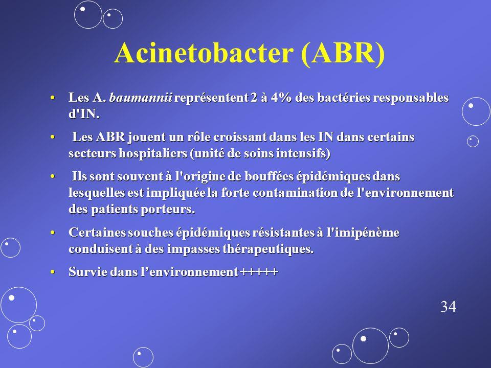 Acinetobacter (ABR) Les A. baumannii représentent 2 à 4% des bactéries responsables d IN.