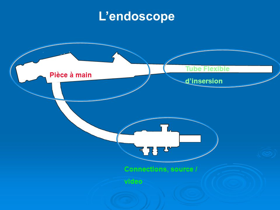 L'endoscope Tube Flexible d'insersion Pièce à main