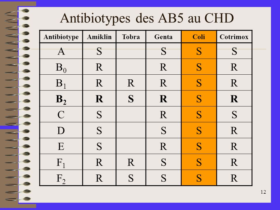 Antibiotypes des AB5 au CHD
