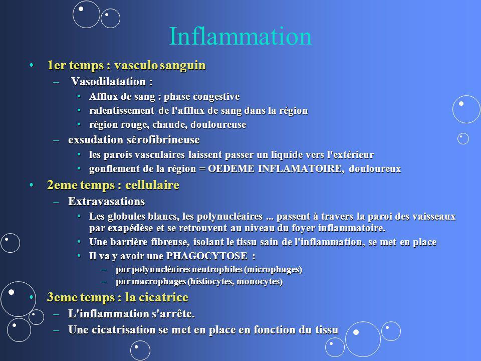 Inflammation 1er temps : vasculo sanguin 2eme temps : cellulaire