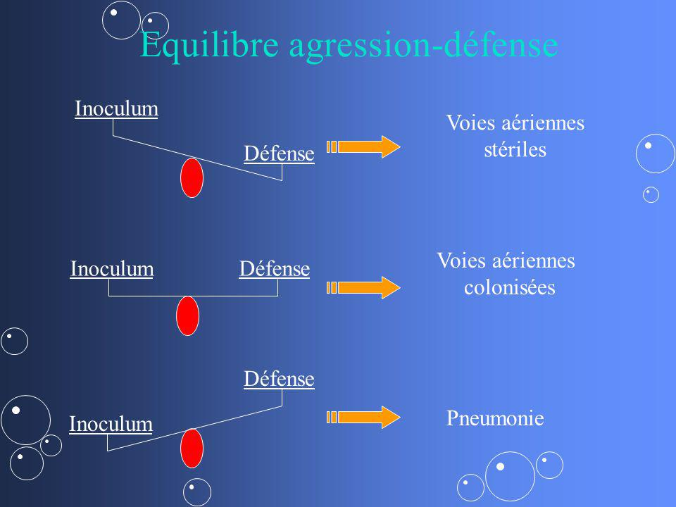 Equilibre agression-défense