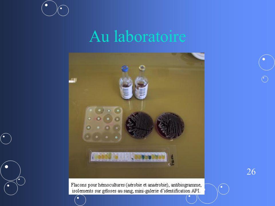 Au laboratoire