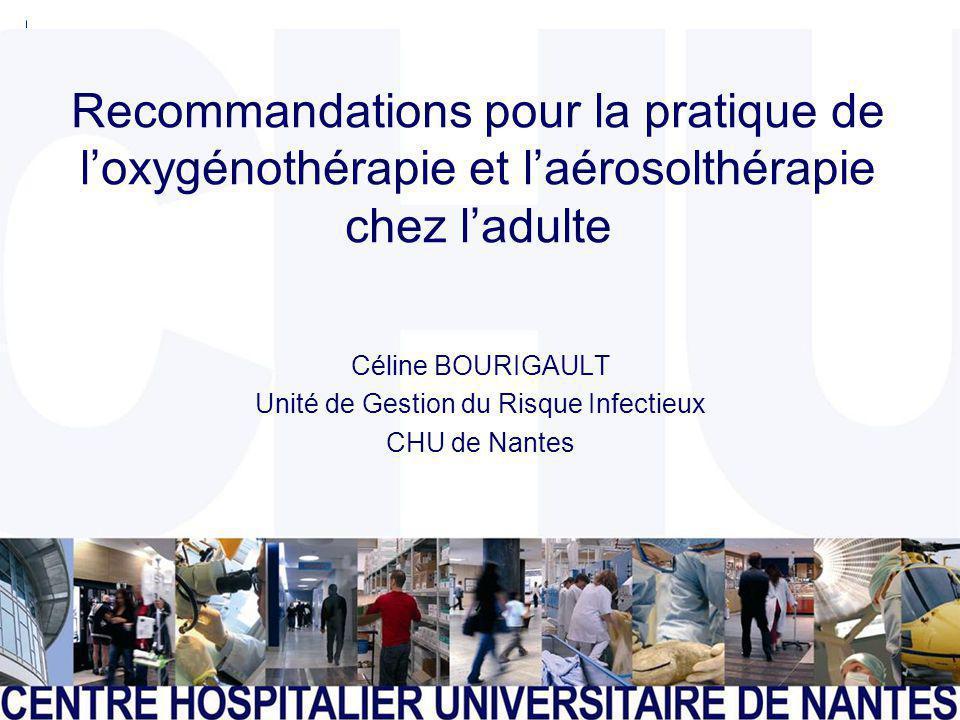 Céline BOURIGAULT Unité de Gestion du Risque Infectieux CHU de Nantes