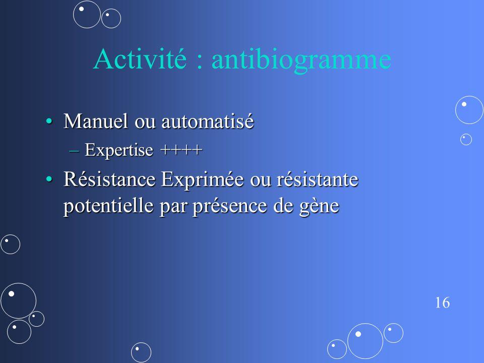Activité : antibiogramme