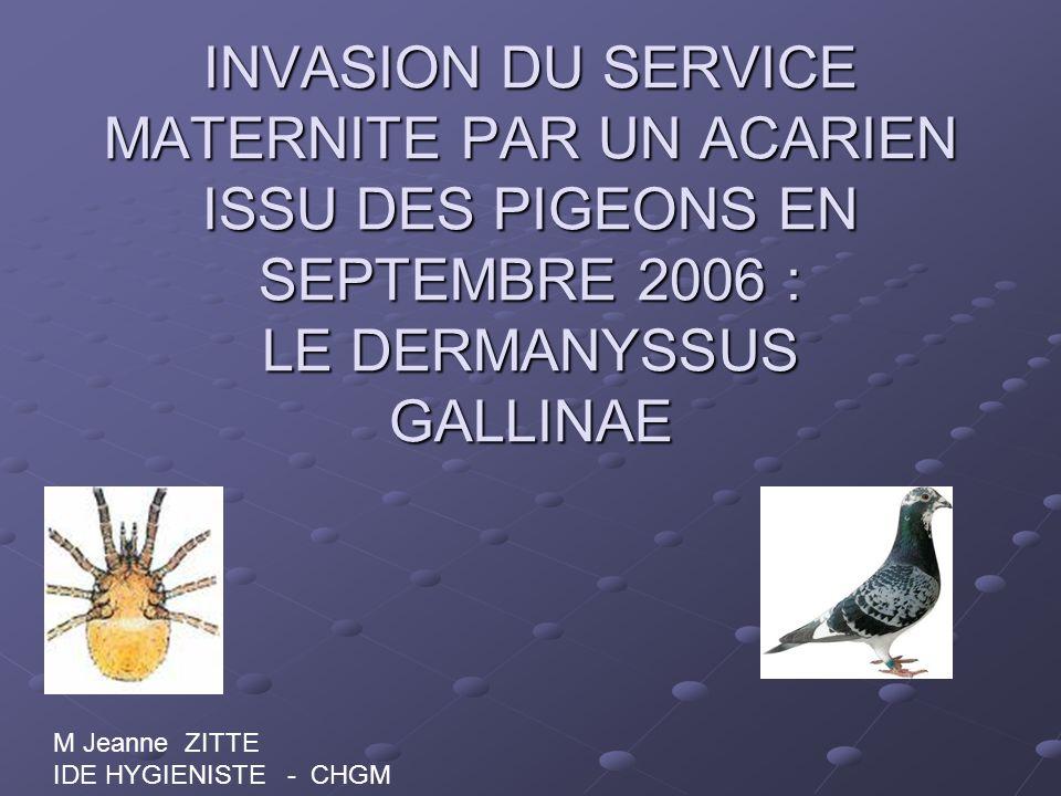 INVASION DU SERVICE MATERNITE PAR UN ACARIEN ISSU DES PIGEONS EN SEPTEMBRE 2006 : LE DERMANYSSUS GALLINAE