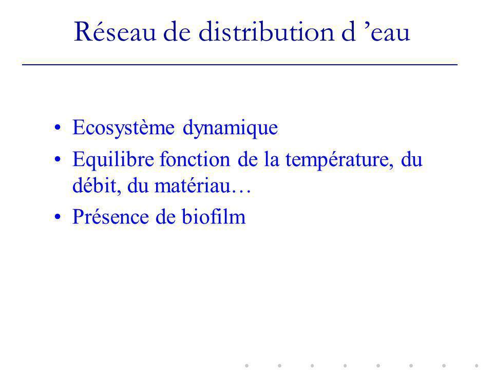 Réseau de distribution d 'eau