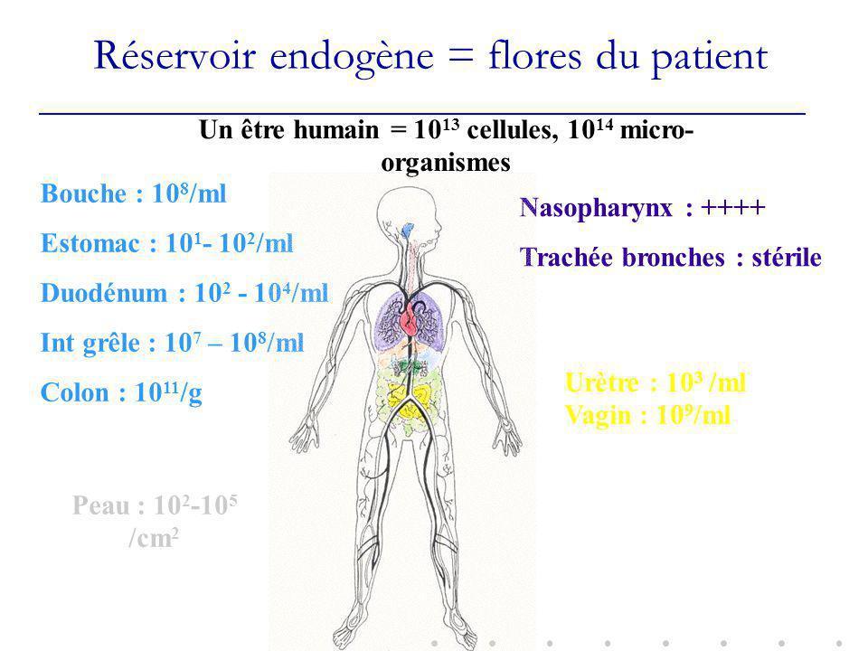 Réservoir endogène = flores du patient