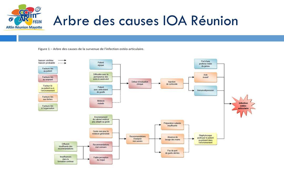 Arbre des causes IOA Réunion