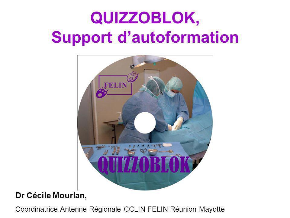 QUIZZOBLOK, Support d'autoformation