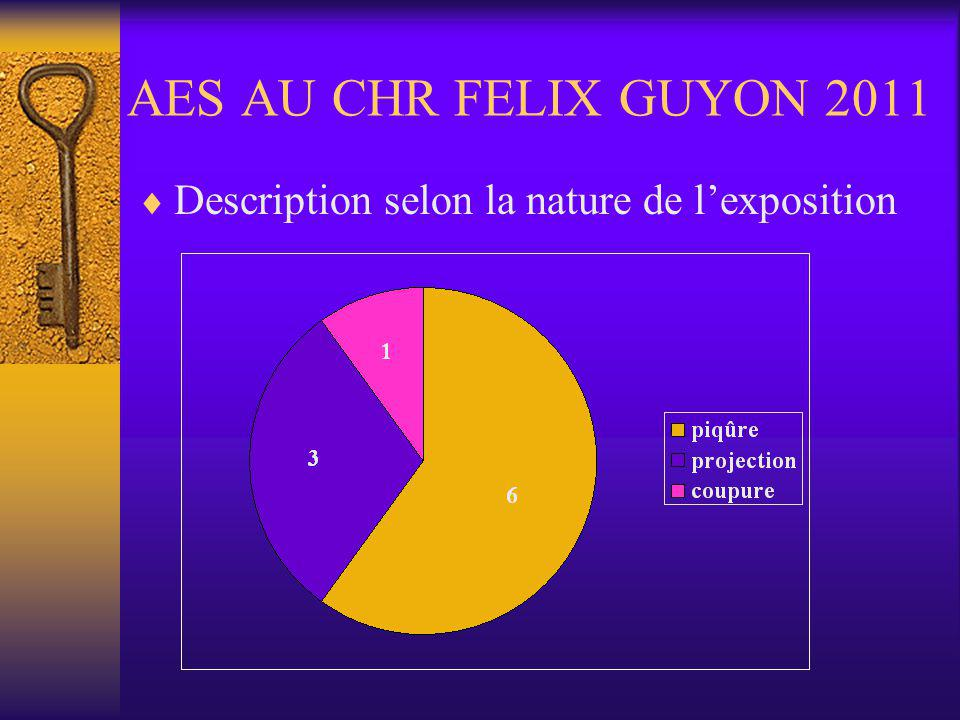 AES AU CHR FELIX GUYON 2011 Description selon la nature de l'exposition
