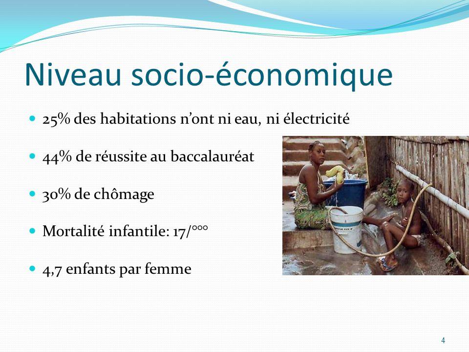 Niveau socio-économique