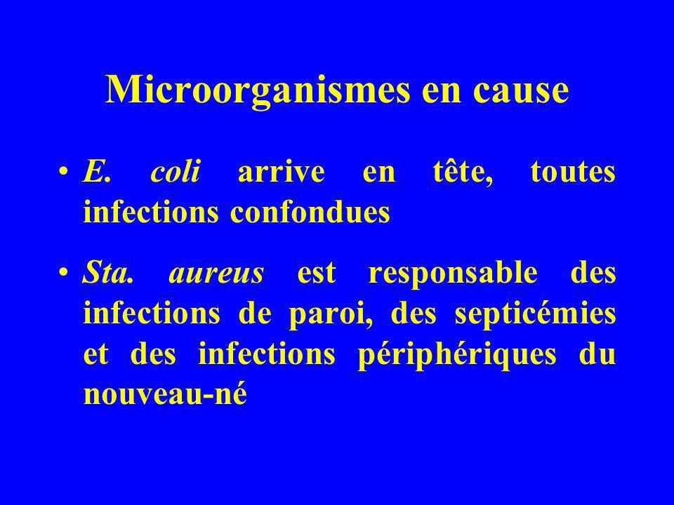 Microorganismes en cause