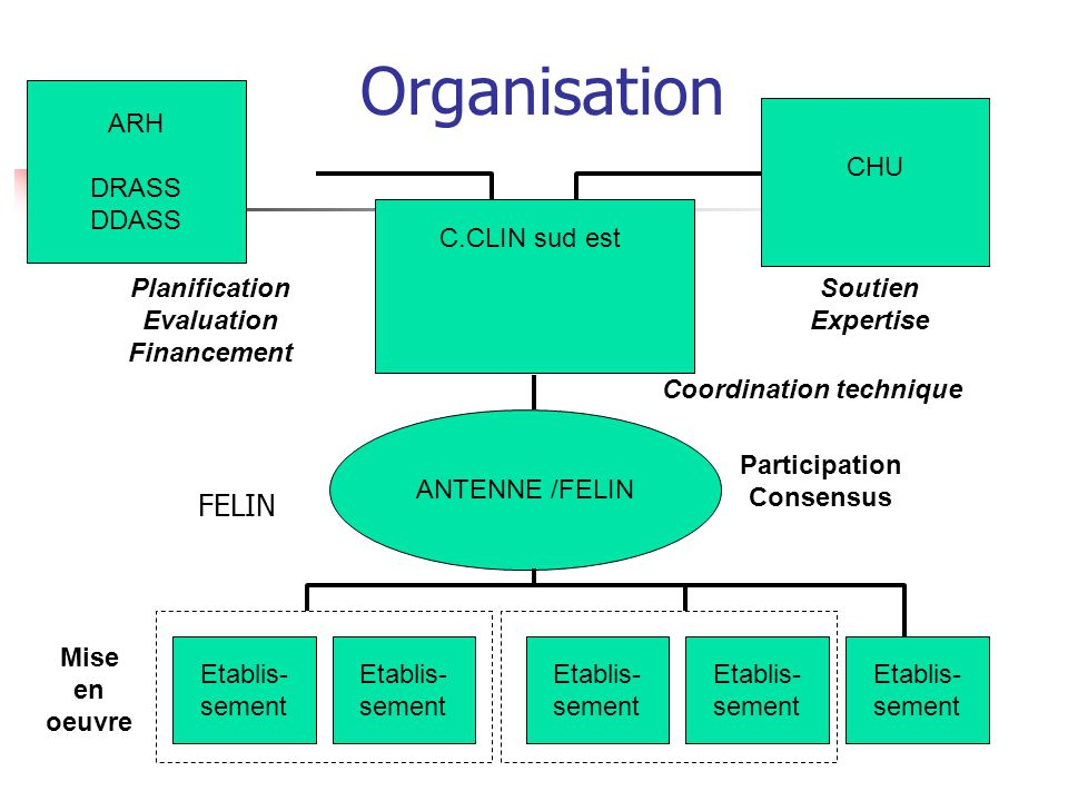 Organisation FELIN ARH DRASS DDASS CHU C.CLIN sud est Planification