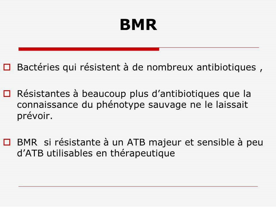 BMR Bactéries qui résistent à de nombreux antibiotiques ,