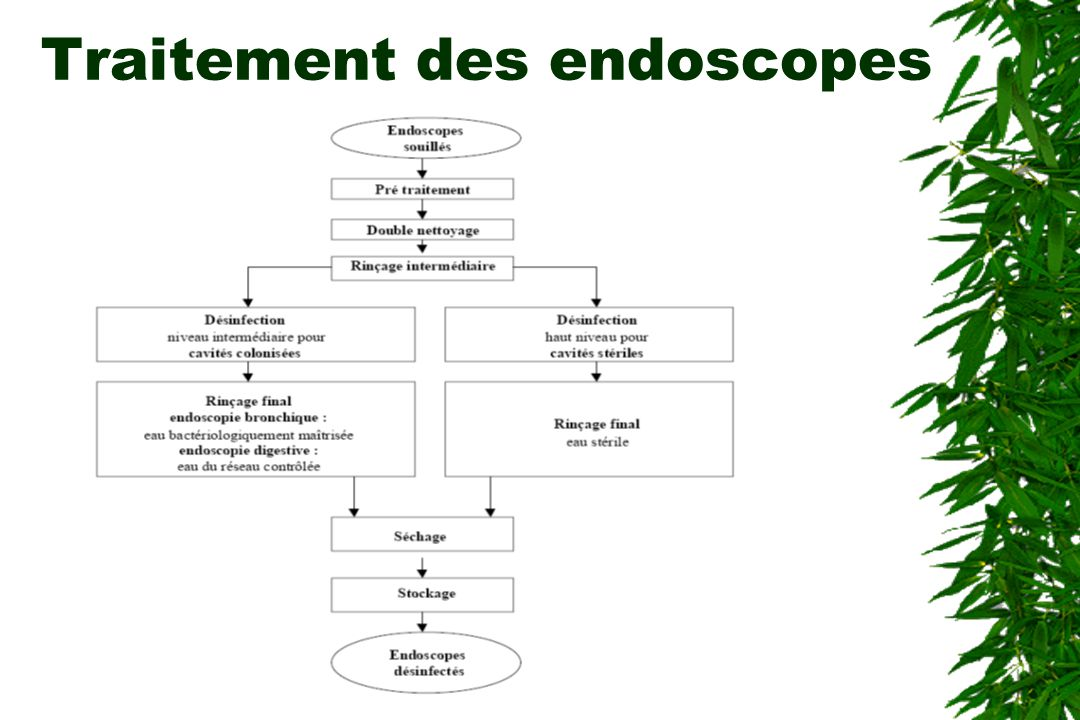 Traitement des endoscopes