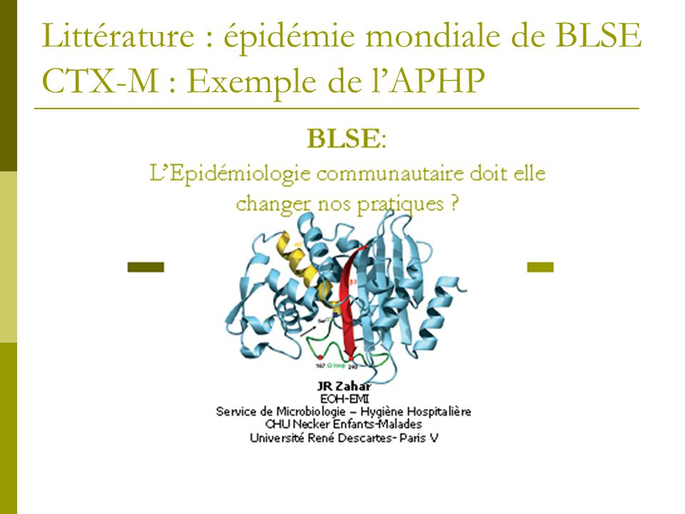Littérature : épidémie mondiale de BLSE CTX-M : Exemple de l'APHP