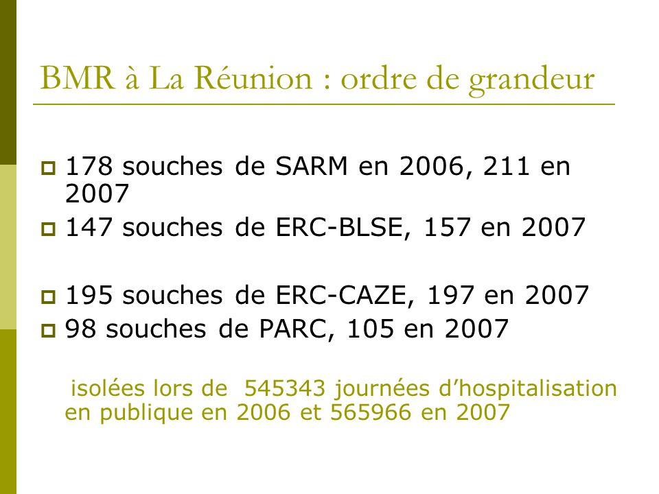 BMR à La Réunion : ordre de grandeur
