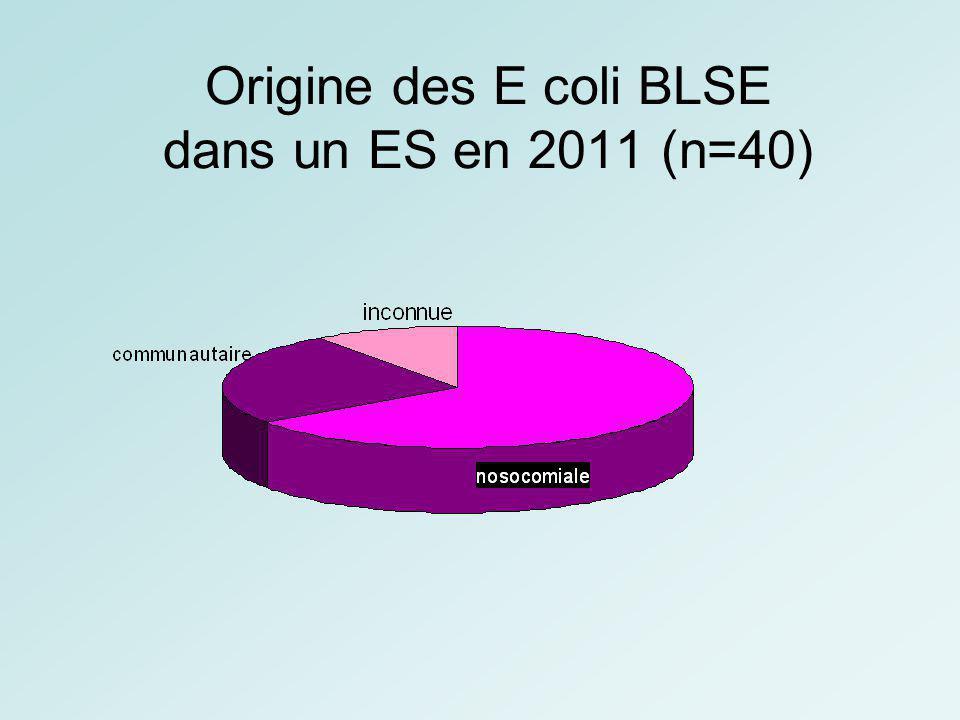 Origine des E coli BLSE dans un ES en 2011 (n=40)