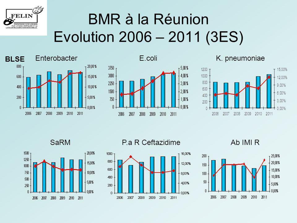 BMR à la Réunion Evolution 2006 – 2011 (3ES)