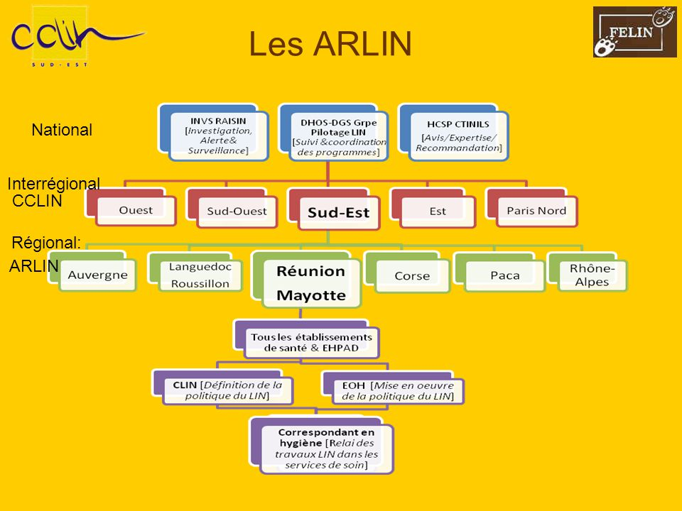 Les ARLIN National CCLIN Interrégional ARLIN Régional: