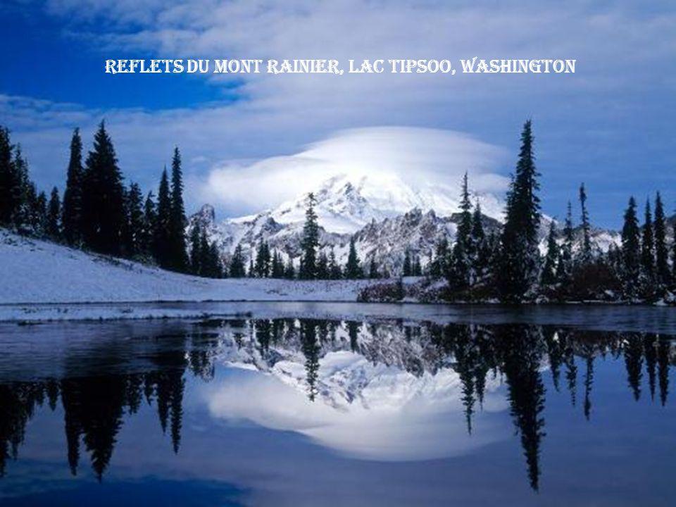 Reflets du Mont Rainier, Lac Tipsoo, Washington