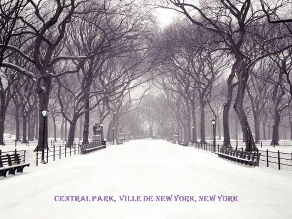 Central Park, Ville de New York, New York