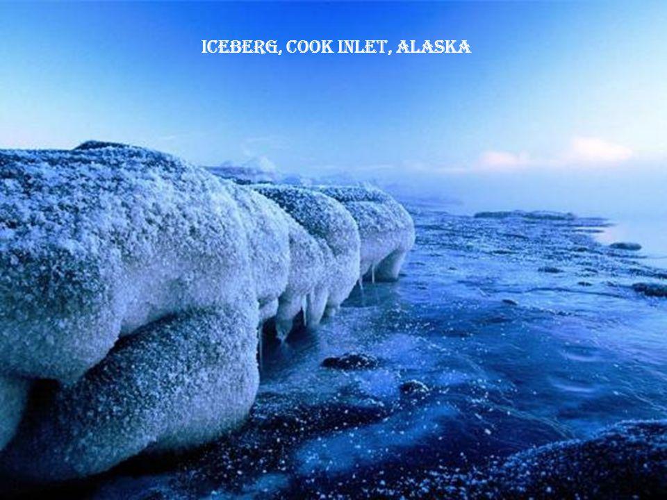 Iceberg, Cook Inlet, Alaska