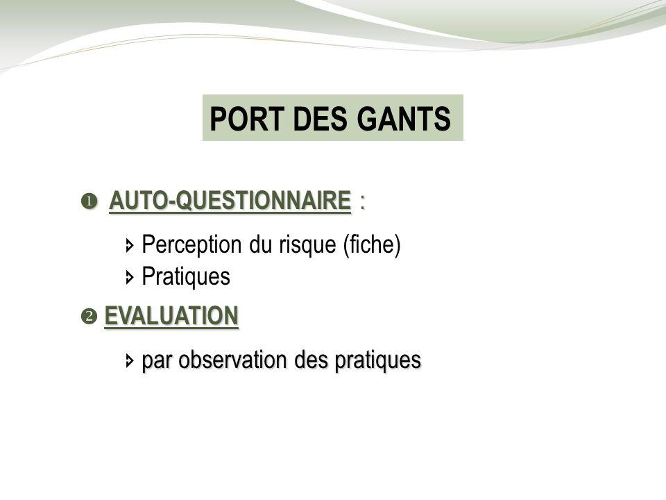 PORT DES GANTS  Perception du risque (fiche)  Pratiques