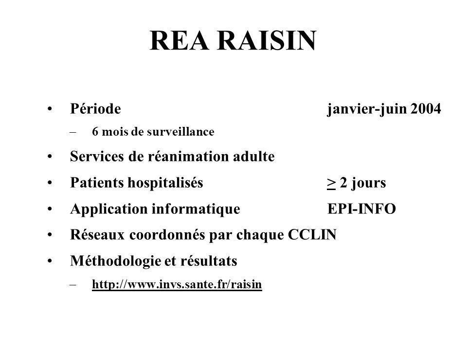 REA RAISIN Période janvier-juin 2004 Services de réanimation adulte