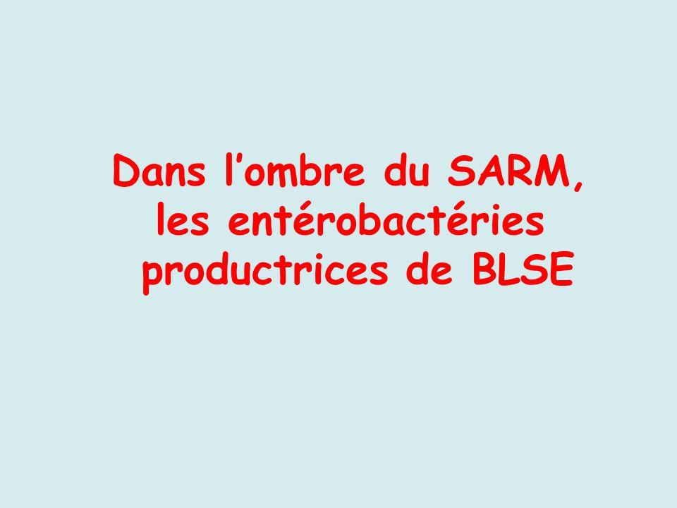 Dans l'ombre du SARM, les entérobactéries productrices de BLSE