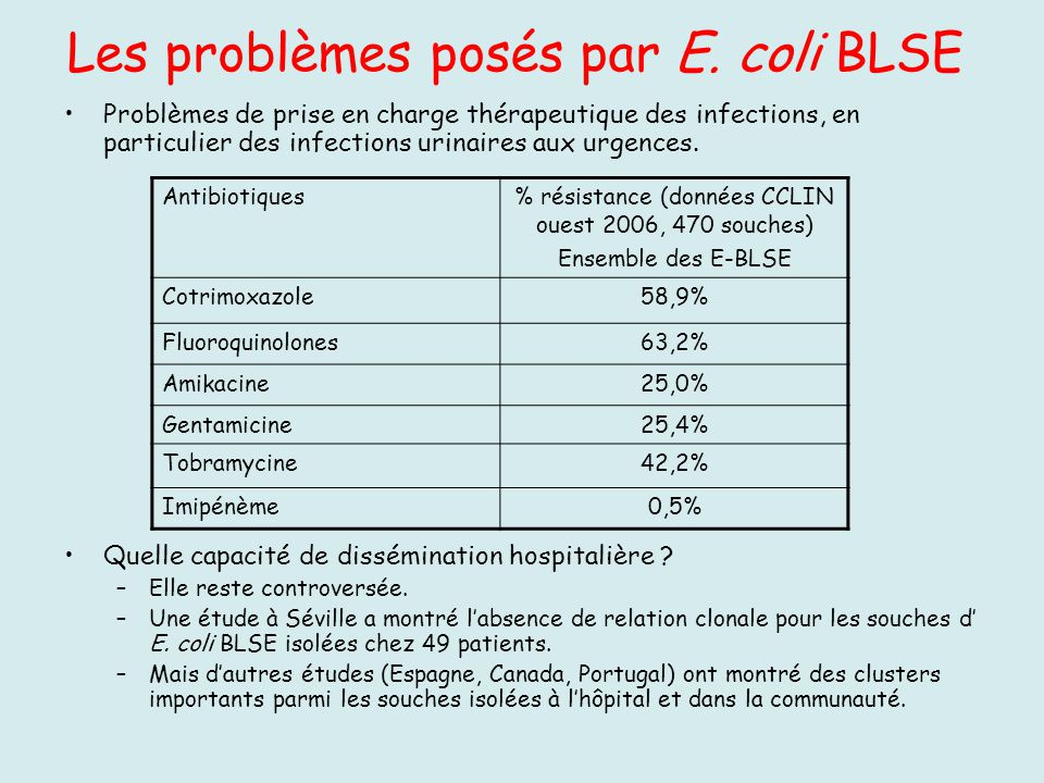Les problèmes posés par E. coli BLSE