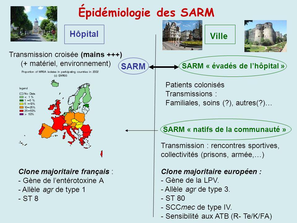 Épidémiologie des SARM