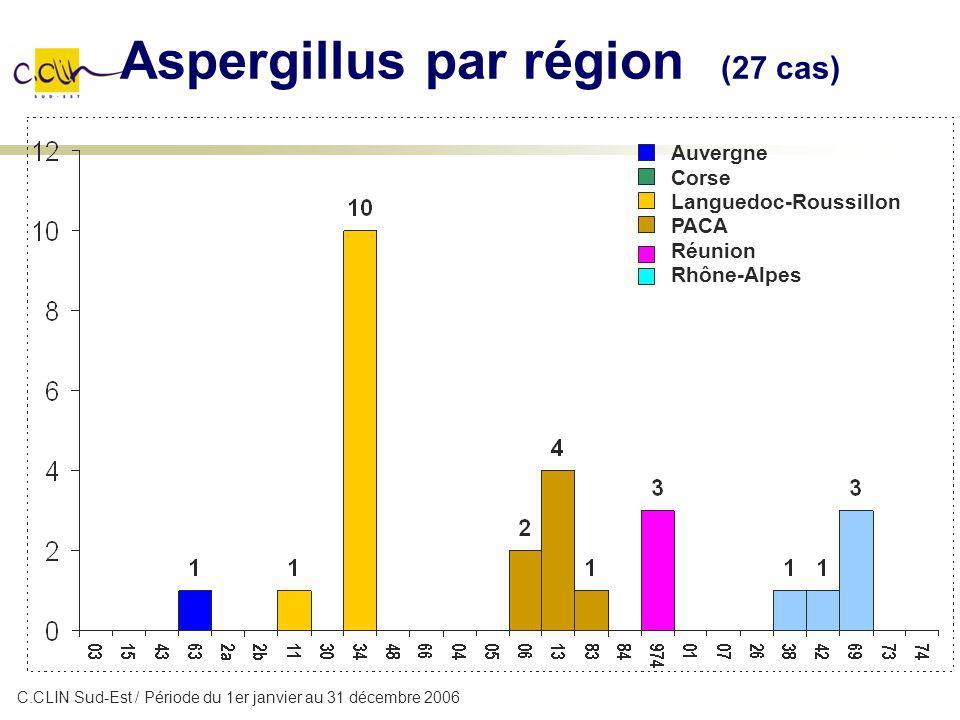 Aspergillus par région (27 cas)