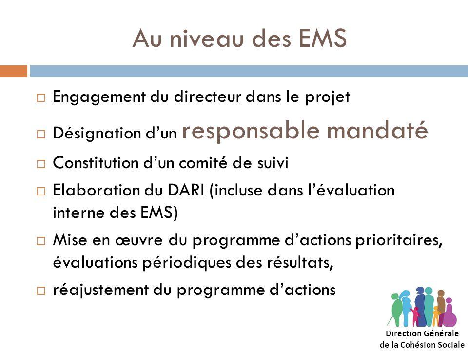 Au niveau des EMS Engagement du directeur dans le projet
