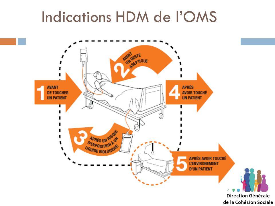 Indications HDM de l'OMS