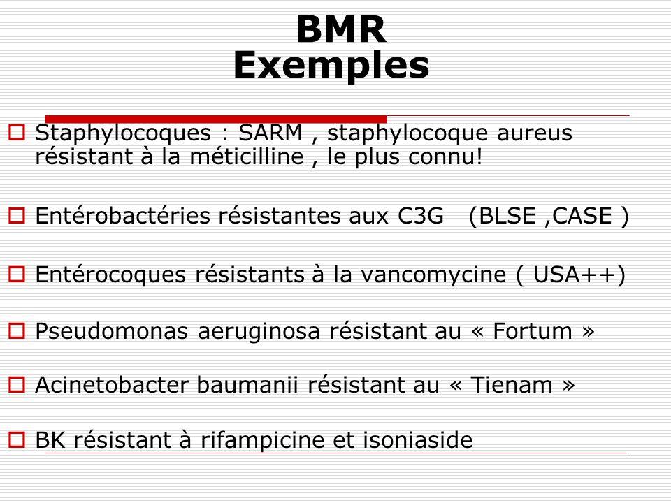 BMR Exemples Staphylocoques : SARM , staphylocoque aureus résistant à la méticilline , le plus connu!