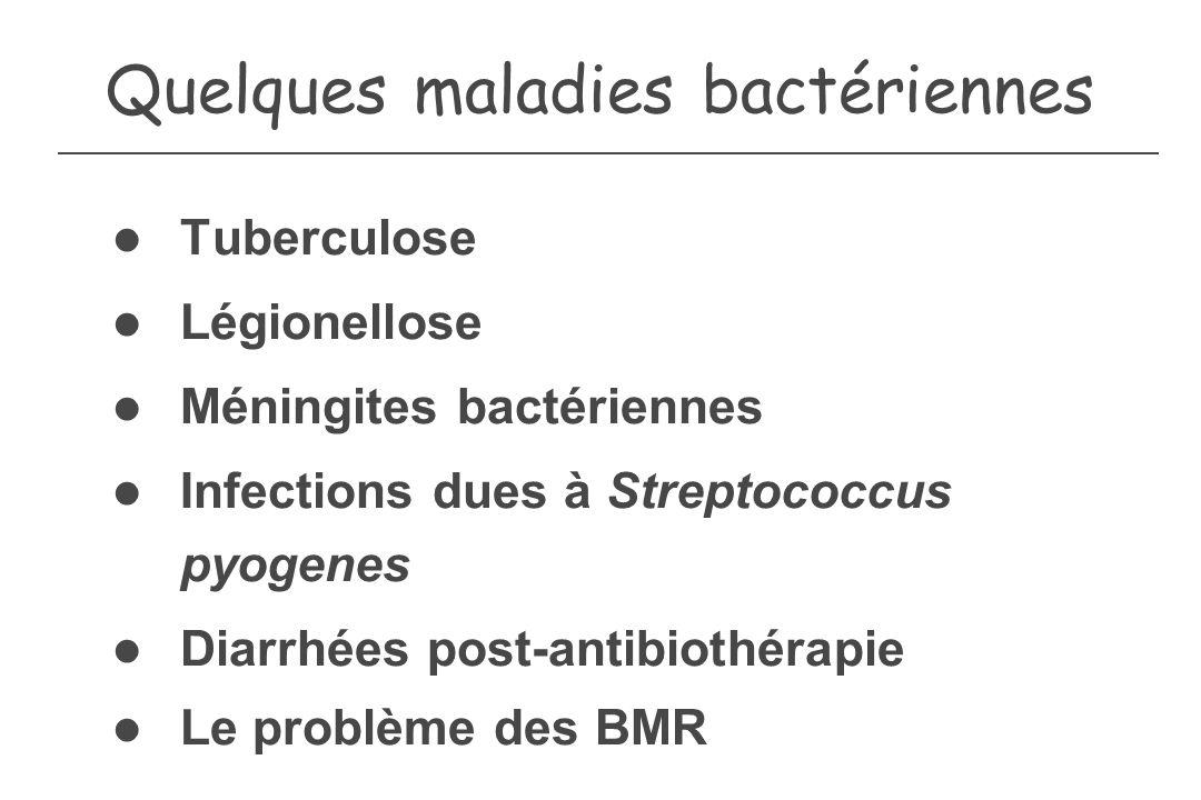 Quelques maladies bactériennes