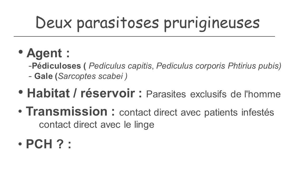 Deux parasitoses prurigineuses