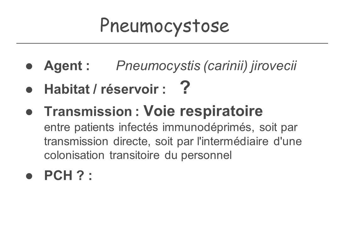 Pneumocystose Agent : Pneumocystis (carinii) jirovecii