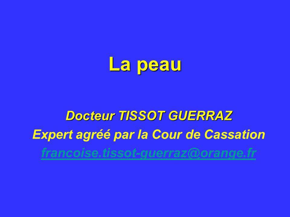 Docteur TISSOT GUERRAZ Expert agréé par la Cour de Cassation