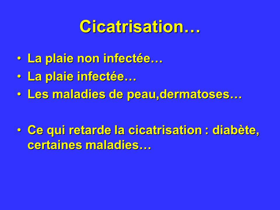 Cicatrisation… La plaie non infectée… La plaie infectée…