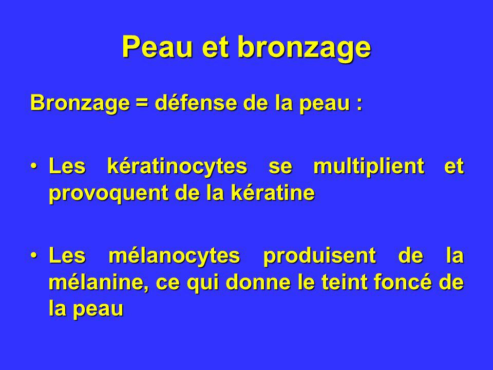 Peau et bronzage Bronzage = défense de la peau :
