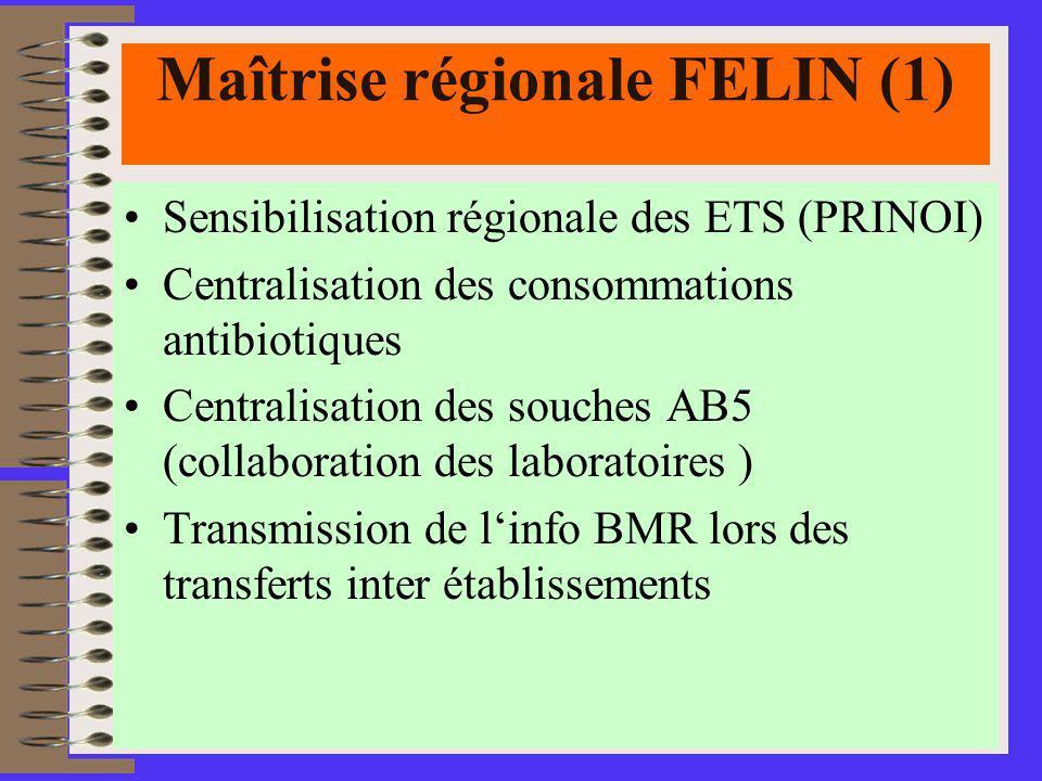 Maîtrise régionale FELIN (1)