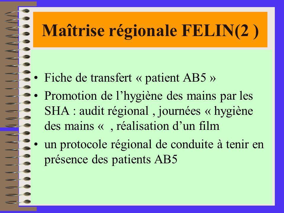 Maîtrise régionale FELIN(2 )
